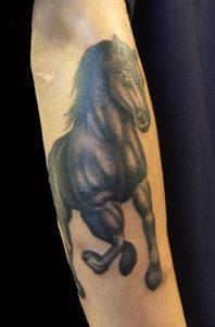 馬のTattoo、タトゥーの画像(彫いち)