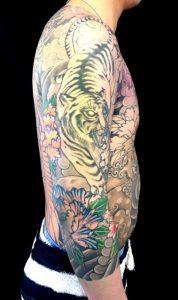 虎と唐獅子牡丹の刺青、和彫り(Japanese Tattoo)画像
