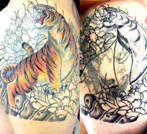 虎と牡丹 ※カバーアップの刺青、和彫り(Japanese Tattoo)画像