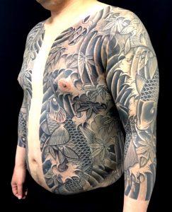 鯉群と紅葉散らしの胸割りの刺青、和彫り(Japanese Tattoo)の画像