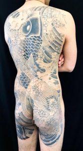 登り鯉と桜散らしの刺青、和彫り(Japanese Tattoo)の画像です。
