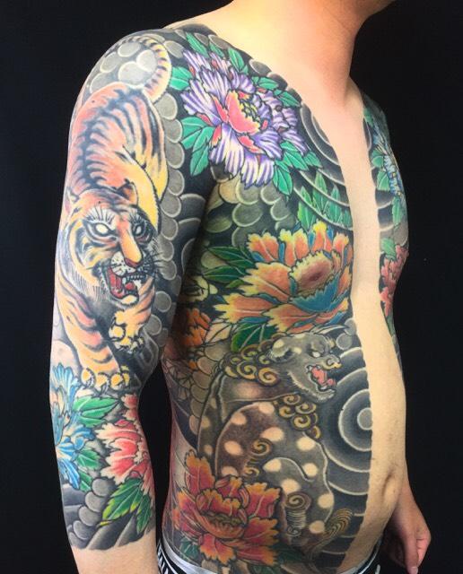胸割り七分袖(唐獅子牡丹・虎の刺青、和彫り(Japanese Tattoo)の画像