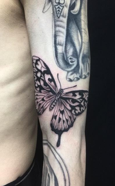 蝶のTattoo(タトゥー)、洋彫りの画像