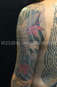 登り鯉と紅葉の刺青、和彫り(Japanese Tattoo)画像