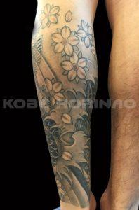 夫婦鯉と桜の刺青、和彫り画像